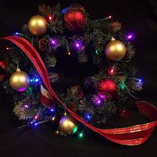 Contemporary Holiday Lighting by EnvironmentalLights.com