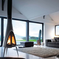 Contemporary Freestanding Stoves by DirectStoves.com