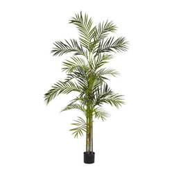 Nearly Natural - 6 ft. Areca Palm Silk Tree - Vibrant green leaves overflowing downward. Features 580 long narrow leaves. Never needs watering or maintenance. Construction Material: Polyester material, Iron wire, Plastic. 30 in. W x 30 in. D x 72 in. H ( 11 lbs. ). Pot Size: 6.25 in. W x 5 in.HA five-trunk, 6-Foot tall Areca Palm Tree comes together to form a multi-level cascade of vibrant green leaves overflowing downward in a shower of greenery. The 580 long narrow leaves form thousands of interesting patterns as you admire the arrangement from all directions. You can also admire the fact you'll never need to water or maintain it - ever. Comes in a pot with faux soil.