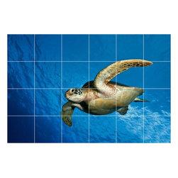 Picture-Tiles, LLC - Turtle Photo Kitchen Bathroom Tile Mural  24 x 36 - * Turtle Photo Kitchen Bathroom Tile Mural 1986