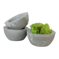 Anson Design CO - Set of 3 - Concrete Decorative Bowl or Planter - Succulent Planter - Ecofriendly - This lovely set of 3 eco-friendly succulent planters are mixed and hand formed by me. I've created this line of planters as a sustainable alternative to your everyday household pot.