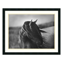 Amanti Art - Fierce Grace Framed Print by Tony Stromberg - Let yourself gallop along the windswept steppes. This black and white photo captures the free spirit of a proud and beautiful animal. In your home, it will bring the essence of the wild to your walls.