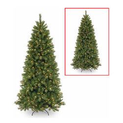 7 1/2 Ft. Pine Slim Christmas Tree w/ 450 Dual LEDs & Footswitch - Measures 7.5 feet tall with 41 inch diameter. Pre-lit with 450 UL listed, pre-strung Dual-Color Low Voltage LED lights. Lights change from warm white to multicolor with the press of a foot switch. Switch controls 5 light and color actions. LED bulbs are energy-efficient and long lasting. Tip count: 1105. All metal hinged construction (branches are attached to center pole sections). Comes in three sections for quick and easy set-up. Includes sturdy folding metal tree stand. Light string features BULB-LOCK to keep bulbs from falling out. Fire-resistant and non-allergenic. Includes spare bulbs. 5-year tree warranty / 3-year lights warranty. Packed in reusable storage carton. Assembly instructions included.