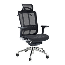 Future Office Chair - Welcome to the Future chair, a fully-featured ergonomic chair at a price you can afford. Future comes complete with a durable mesh seat and back to keep you cool, a waterfall seat to ease pressure on your thighs, and an adjustable lumbar support to alleviate lower back pain. The armrests adjust both in height and depth to help position your elbows properly while typing. The headrest is fully adjustable and there's also a tension knob to adjust the chair tilt. Future even comes with a hanger to hold your jacket! This is a chair made to take you well into the future.