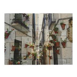 "Marble Art Mosaics - Flores - 24""w x 18""h - Marble Art Mosaic - Flores ""Street of Flowers"""