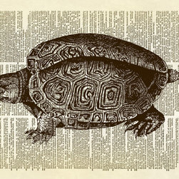 Altered Artichoke - Turtle Terrapin Reptile Animal Dictionary Print, Sepia - This print features an antique illustration of a turtle. This is a wonderfully detailed drawing. The print would make a nice addition to your wall art anywhere in your home.