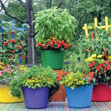 Contemporary Gardening Tools by Kinsman Garden