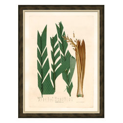 Soicher-Marin - Palm Fronds E - Giclee Print with a brown distressed wood frame with an off-white linen liner. Includes glass, eyes and wire. Made in the USA. Wipe down with damp cloth