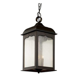Trans Globe Lighting - Trans Globe Lighting 40234 ROB Outdoor Hanging Light In Rubbed Oil Bronze - Part Number: 40234 ROB