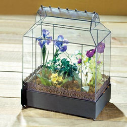 H. Potter - H. Potter Walden Table Top Terrarium Multicolor - WAR105 - Shop for Planters and Pottery from Hayneedle.com! Give your plants a home they'll love with the charming H. Potter Walden Table Top Terrarium. Clear glass walls and dark grey wrought iron frame add to its simple classic charm. You'll also love its compact table top design that lets you display your plants anywhere in the house.Terrariums provide a unique opportunity to garden under glass during any season. Plant a rainforest desert or woodland arrangement to create your own force of nature. These small greenhouses are warmed by the sun and trap moisture inside to produce a prosperous miniature garden. The distinctive glass windowed container offers traditional styling and functionality that can be used as a protective showcase for any cherished favorites. About H. Potter ProductsOver the past nine years H. Potter has continually enhanced all aspects of their business to fill the desires of their growing list of satisfied customers. With the entrance of 2006 they were able to offer over 100 impressive designs. Not only are they always striving to bring you products that are new bold and unique but they also work hard to increase the overall quality of the items. They do this by incorporating heavier materials stainless steel hardware and dramatically expanding their copper container business. H. Potter artisans design many 100% hand-made pieces to fit effortlessly into your home or garden setting.