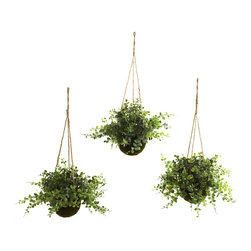 Nearly Natural - Eucalyptus, Maiden Hair & Berry Hanging Basket (Set of 3) - Hanging baskets are some of the best ways to decorate. Especially if they are filled with lush, leafy plants. These Eucalyptus, Maiden Hair & Berry Hanging Basket set combines three different (faux) plants, all ready to hang wherever you wish. This is a set of three, so you can decorate your entire home or office with ease. Never needs water, making it a smart gift for someone who loves plants, yet is a bit forgetful when it comes time to water them!