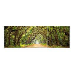 """Baxton Studio - Baxton Studio Tunnel of Trees Mounted Photography Print Triptych - A languid stroll surrounded by lush greenery beckons. The photo, divided into three, is printed on separate waterproof vinyl canvases, which are intended to be hung together as a triptych. Bright inks displayed on MDF wood frames bring the scene to life. The Chinese-manufactured photo triptych is fully assembled and ready to hang, though mounting hardware is not included. To clean, we recommend dry dusting.Dimensions (each): 20"""" H x 20"""" W x 1"""" D"""