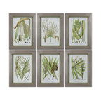 Uttermost - Palm Seeds Framed Prints, Set of 6 - Horticulture has come to your home in the guise of this framed set of six prints. Beautiful champagne, silver leaf frames have medium green inner liners and the lovely prints are under glass to protect them from fading.