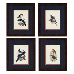 Paragon - Birds PK/4 - Framed Art - Each product is custom made upon order so there might be small variations from the picture displayed. No two pieces are exactly alike.