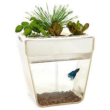 Contemporary Indoor Pots And Planters by ThinkGeek