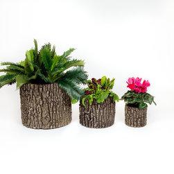 Vertical Planter Family -