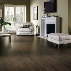 Eclectic Laminate Flooring by Armstrong Flooring