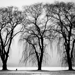 WCC - 'Autumn Trees' Black and White High-Resolution Photo Printed on Canvas - High quality 0.56 mm thick 400 gsm cotton canvas.