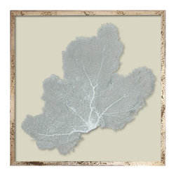 "24"" Sea Fans Framed - Our Framed Sea Fans are actual dried sea fans harvested from the ocean. We tint them by hand using colors we love. Because our product is from nature, there may be variations in color, voids, irregular shapes, chips and flaking."