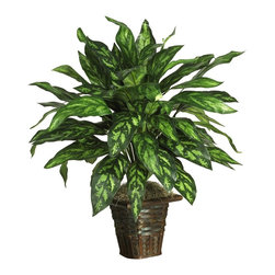 Nearly Natural - Silver King with Basket Silk Plant - Not for outdoor use. Perfect for any empty space. Rich colorfully hued leaves. A wood wicker basket adds simple beauty. Included container size: 7 in. W X 8 in. H26 in. W X 26 in. D X 31 in. H (3lbs). Live a life of luxury with this beautiful silk Silver King. Rich colorful hues and ornately designed leaves create a royal appeal that can't be beat. At 31 inches tall, this lovely plant blends well in any home or office setting. Nestled in a shapely wicker basket bursting with moss, it makes a nice housewarming gift for family or friends. Best of all, there's no watering or pruning required.