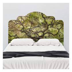 J. Paul Moore - Paul Moore's Japanese Maple Headboard Wall Decal - Fall asleep under the branches of the Japanese maple on this adhesive headboard wall decal. As one of the world's most well-loved and most-cultivated trees, it's a favorite of the Japanese gardener.