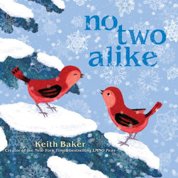 No Two Alike by by Keith Baker - The winter landscape is beautifully depicted in this story of two birds. I love the illustrations and bright colors.
