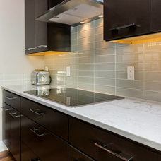 Contemporary  by Behr Construction