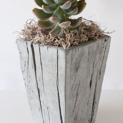 Cast Wood Planter, Small - It looks like distressed wood, but this planter is actually made from lightweight and ecofriendly concrete. Sounds cool, right?
