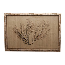Two Brown Seafans on Natural Shadowbox - One well-chosen pair of sea fans, tilted slightly away from one another so that the dense and delicate spread of their impossibly fine branches fills a large and well-proportioned space, is mounted within the rectangular frame of this seaside shadow box so that the complexity of their texture can bring overpowering natural beauty to your home.  The background, also subtly textured, contrasts with the sea fans to perfection, while the mottled metallic of the frame ties the two neutral shades together.