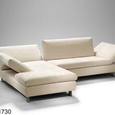 Modern Sectional Sofas by Bullfrog-Americas