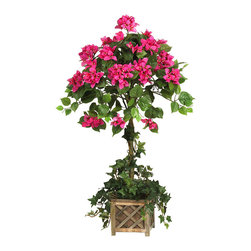 Nearly Natural - Bougainvillea Topiary with Wood Box - Feast your eyes on this lovely silk Bougainvillea topiary. A cupola shaped top filled with a mix of dainty pastel flowers and lush greenery sets the stage for this stunning creation. Detailed leaf covered vines extend the entire length of the stem, creating an authentic natural image. A rustic wooden country planter overflowing with cascading stems is a nice accent to this unique topiary masterpiece.