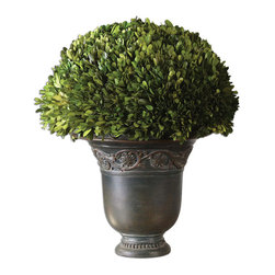 Uttermost 60092 Preserved Boxwood Globe Botanicals - Uttermost 60092 Preserved Boxwood Globe Botanicals*Collection: Preserved Boxwood*Designed by Constance Lael-Linyard*Weight: 14