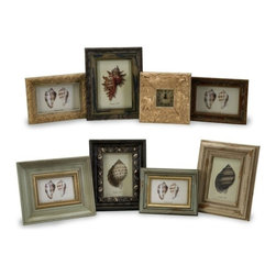 """IMAX - Seaside Frames - Assorted Set of 8 - Assorted set of eight framed seaside shell studies. Item Dimensions: (5.75-9.5""""h x 8-10.5""""w)"""