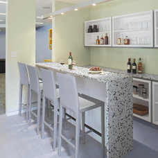 Contemporary Home Bar by Eisner Design LLC