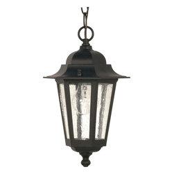 "Nuvo Lighting - Nuvo Lighting 60-993 Cornerstone 1-Light 13"" Hanging Lantern with Clear Seed Gla - Nuvo Lighting 60-993 Cornerstone 1-Light 13"" Hanging Lantern with Clear Seed Glass"