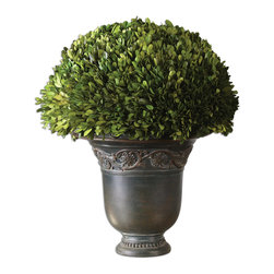 Uttermost - Globe Preserved Boxwood - An impeccably shaped boxwood makes a classic statement whether it's gracing your front porch or your living room. This freshly picked plant was preserved so it will maintain its vibrant look for years to come. Find just the right spot in your home for this elegant addition and you'll never have to bother with watering.