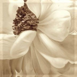 Seed Of White Flower Canvas prints - Seed Of White Flower Canvas prints online for sale. high resolution quality plus lowest rate means 100% customer satisfaction of our products of canvas prints. Just check our great service for canvas prints by click on this image you can order online and buy flower canvas prints only in $14.94! Free shipping!