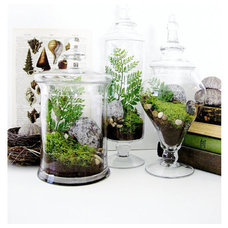 Traditional Indoor Pots And Planters by Etsy