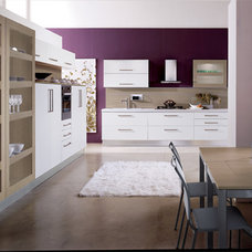 Modern Kitchen Cabinets by European Cabinets & Design Studios