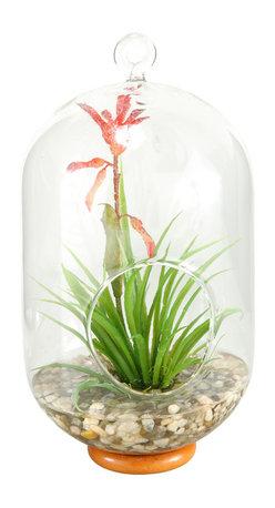 D&W Silks - D&W Silks Blooming Succulent In Glass Birdhouse - Blooming succulent in glass birdhouse