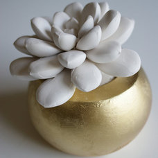 Contemporary Plants by Etsy