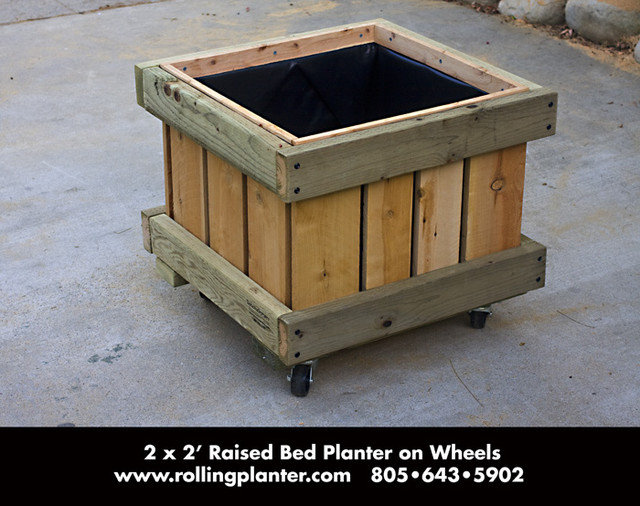 Contemporary Outdoor Planters by RollingPlanter