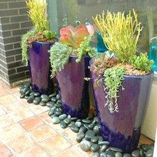 Eclectic  by J. Peterson Garden Design