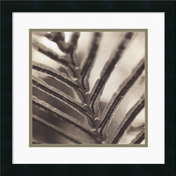 Amanti Art - Abstraction Framed Print by Jesse Canales - Self-taught photographer Jesse Canales finds the Abstract Art in nature's simplest designs. Striking and minimalist, this black & white photography print lends any decor a Contemporary feel.
