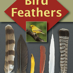 Stackpole Books - Bird Feathers - A one of a kind guide to identifying and understanding bird feathers. Nearly 500 full color photos that cover over 397 bird species. An outstanding guide to feathers Birder's World. Bird Feathers is a must-have book for naturalists and birders Birding Bus