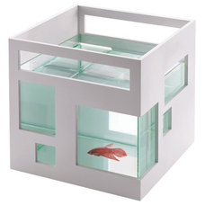 Modern Fish Supplies by Amazon