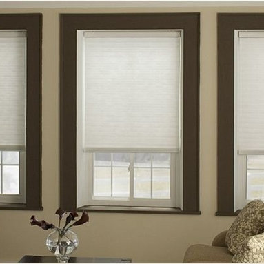 Cellular Blinds- 3 Day Blinds- Living Room - Cellular Blinds are the perfect blend of form and function and can compliment nearly any decor. Cellular Blinds are perfect for living rooms or bedrooms where room darkeing or light control capabilites are desired.  http://www.3dayblinds.com/window-treatments/blinds/cellular