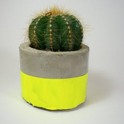Neon Yellow Modern Concrete Planter by Dachshund in the Desert - I love this concrete neon planter that even comes with the cactus!
