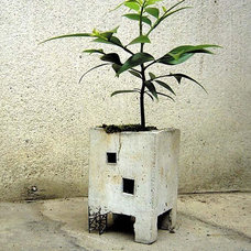Eclectic Outdoor Planters by MollaSpace