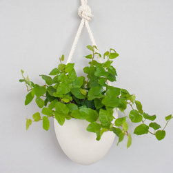 Suspended Porcelain Planter - This handmade porcelain planter looks great on any wall hanging from its cotton rope. Use it for adding fresh plant life in your kitchen or bathroom. It can also be used for showcasing other decorative accents or keeping little oddities within reach at your desk.